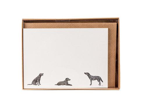 Labrador Trio Correspondence Postcards