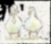 Wedding Ducks (Medium).png