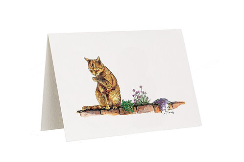 'It's A Hard Life' Ginger Cat Card