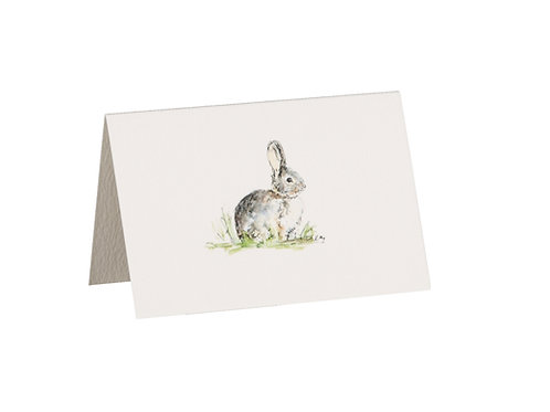 Bunny Boxed Mini Gift Cards
