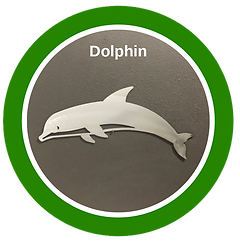 Sea-Of-Thanks-dolphin.png