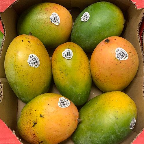Keitt mango **1 ea **