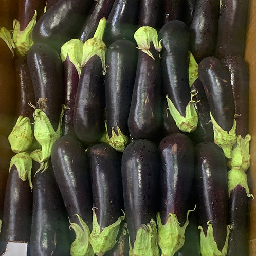 Italian eggplant ** 1ea**
