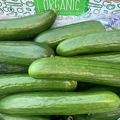 Organic Persian Cucumbers 1 lb. (Mx)
