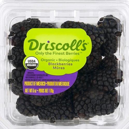Organic blackberries 6z