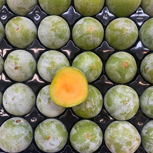 Turtle Egg Plumcots 1lb (USA)