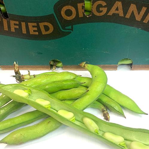 Organic Fava beans 1 lb (USA)