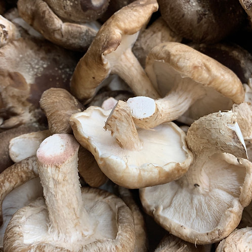 Organic shiitake mushrooms 1lb (USA)
