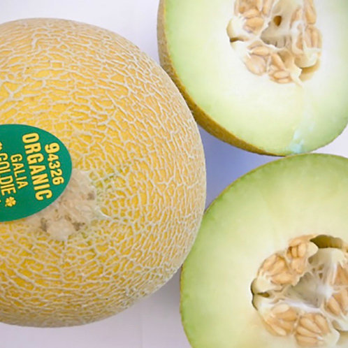Organic Galia melon 1ea