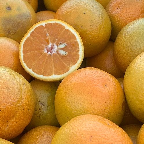 juice oranges 25ct