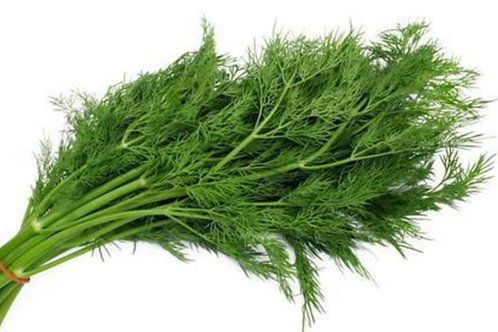 Baby Dill 1 bunch