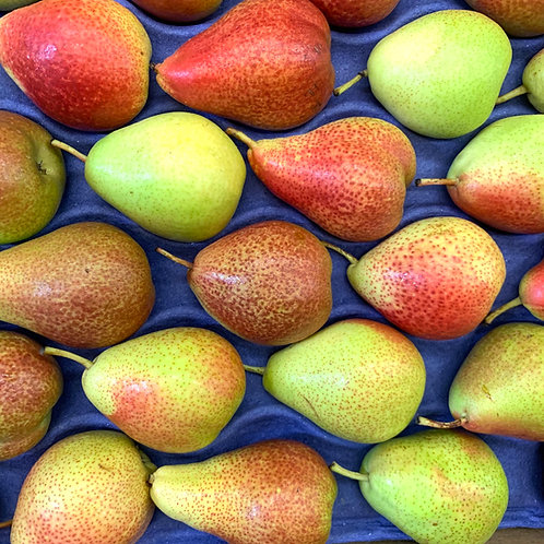Forelle pears 1lb (Chile)