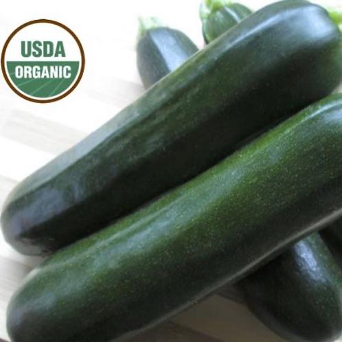 Organic zucchini  1 lb. (Locally grown in San Juan Bautista)