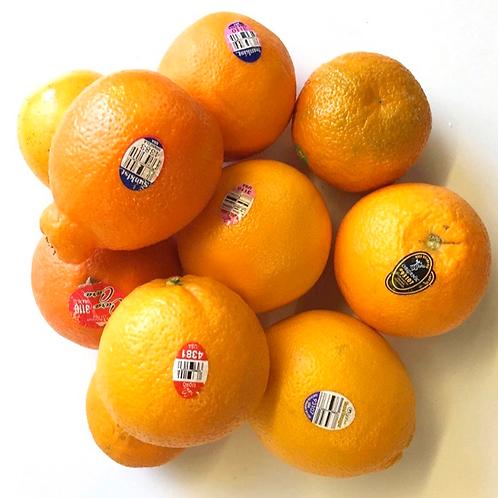 Organic oranges juicing, 10 pcs