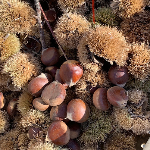 California chestnuts 1lb