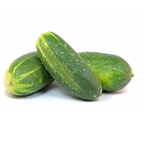 Pickling Cucumber **1 ea**