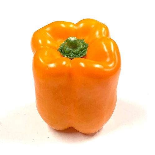 Orange Bell Pepper 1ea