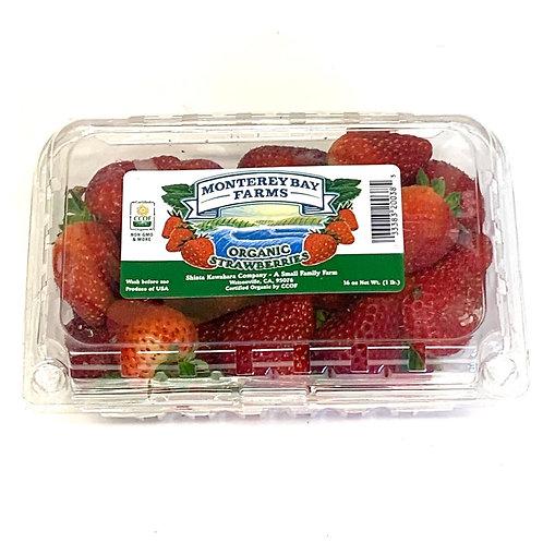 Monterey Bay Organic Strawberries 16z