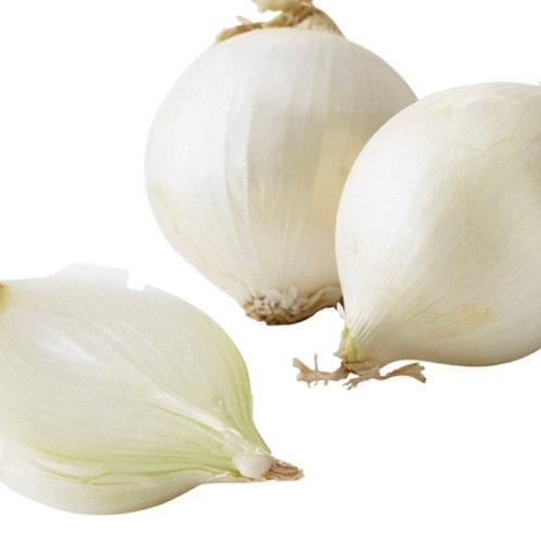 White Onions 2 lbs