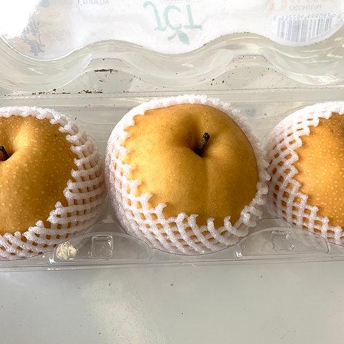 Large Singo Pears 3pk