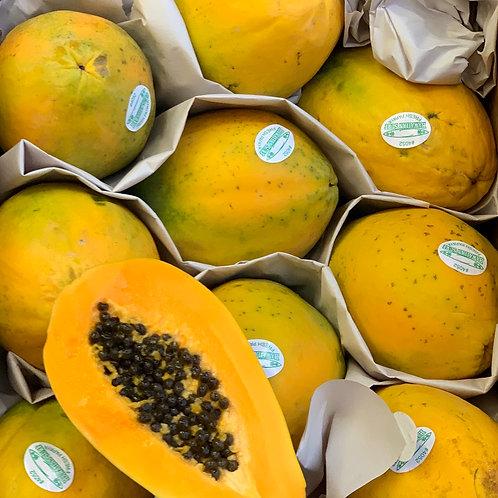 Hawaiian papayas 3pcs value pack
