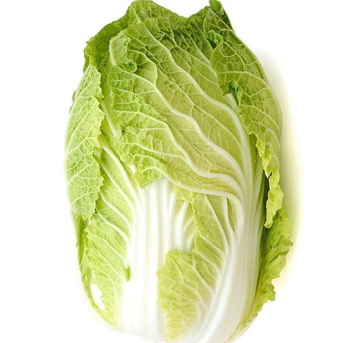 Napa cabbage appx 2lbs