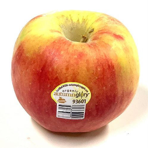 Organic Autumn Glory apple *1ea