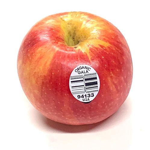 Organic gala apple -small