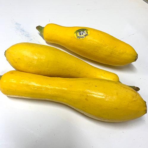 Organic Yellow Squash 1 lb.