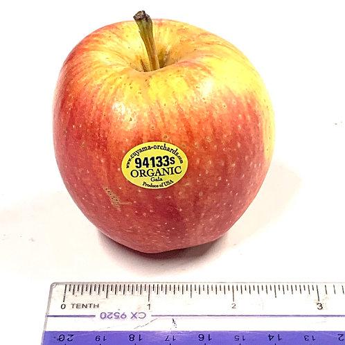 Organic Gala Apple *1ea