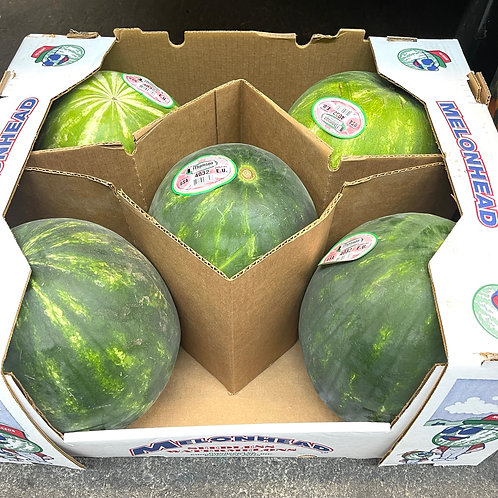 Seedless Watermelon 11-14 lbs
