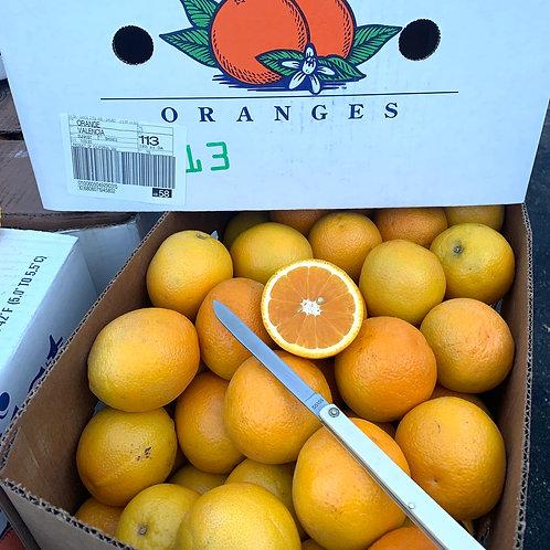 Juice oranges 113ct Appx 40 lbs