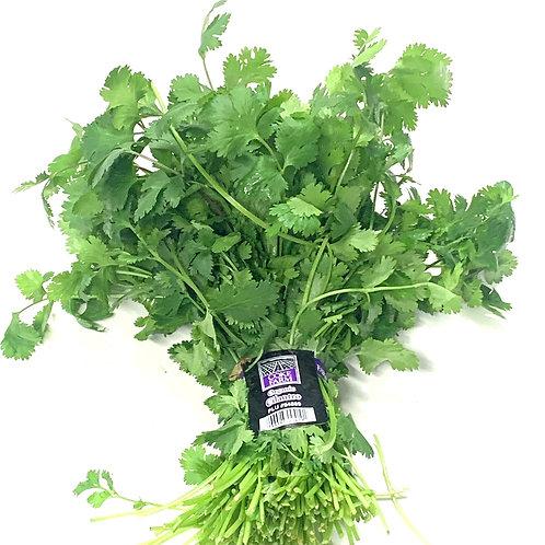 Organic cilantro 1bunch