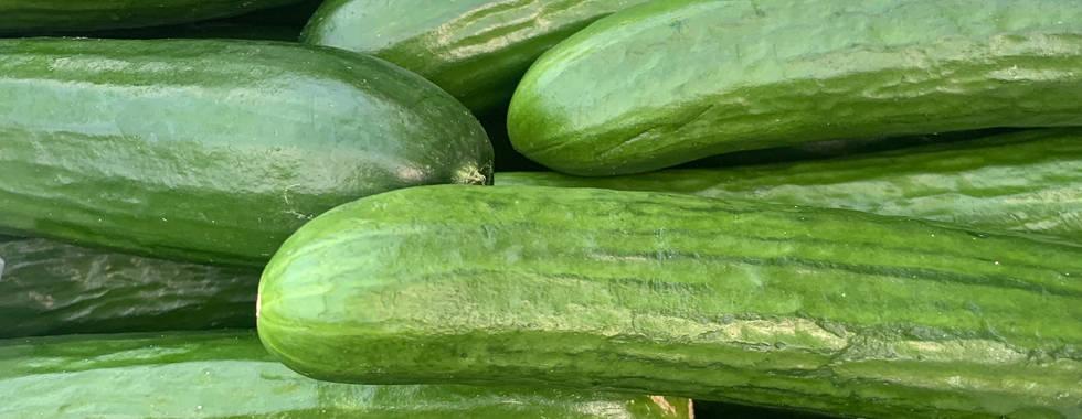 Cucumbers & Squashs