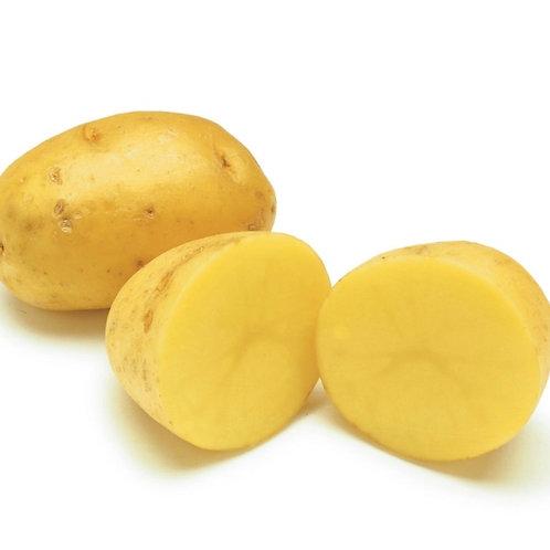 Yukon Potatoes 1lb  (USA )