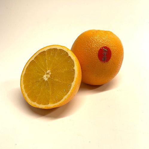 Organic Naval Oranges 1 ea