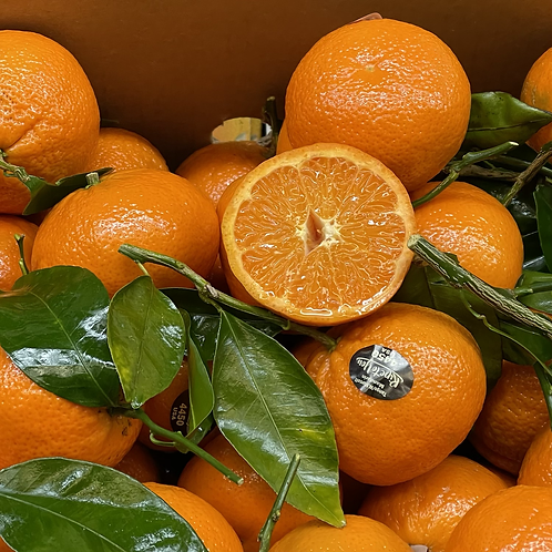 Tango mandarins w/ leaves 1lb. (Local)