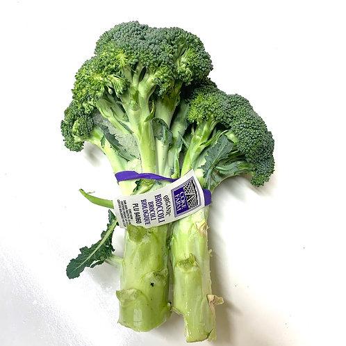 Organic Broccoli Bunch (USA)
