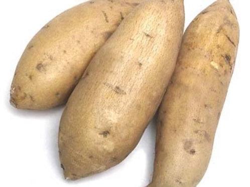 Sweet Potatoes 1lb