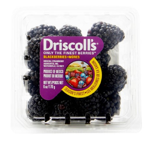 Driscoll's Blackberries 6z.