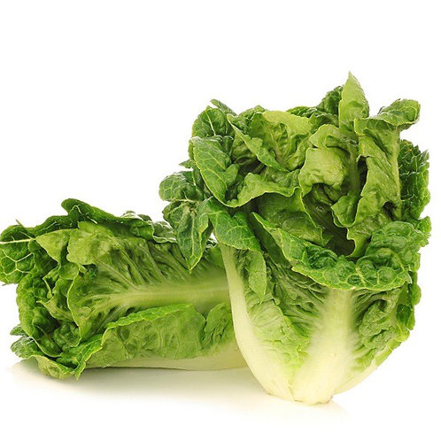 Little Gem Lettuce 1ea