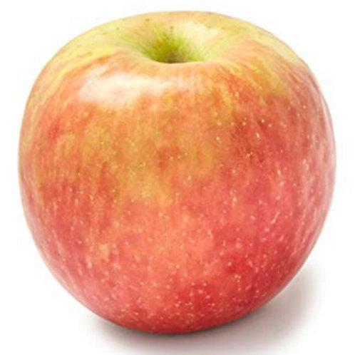 Fuji Apples 2pcs  appx 1lb