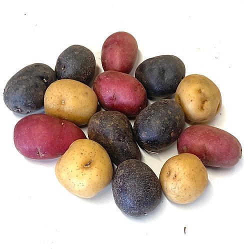 Tri-color marble potatoes 1lb (USA)