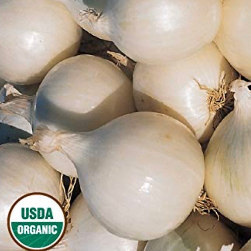 Organic white onions 2 lbs (USA)