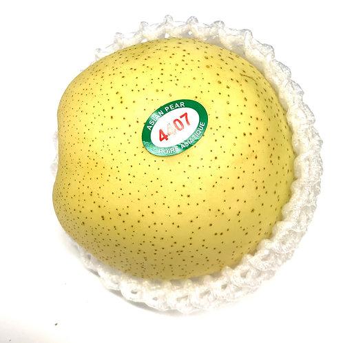 Golden Asian Pear 1pc  appx 14z  (Chn)