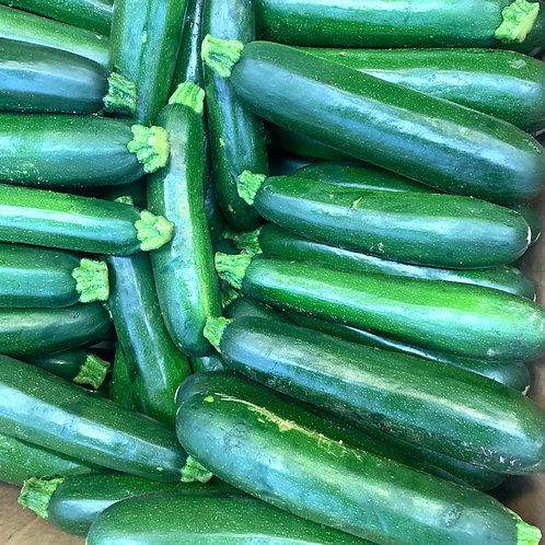 Zucchini squash 1pc*