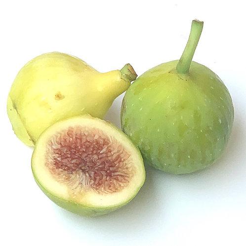 Kadota  Figs 1 pint (USA)
