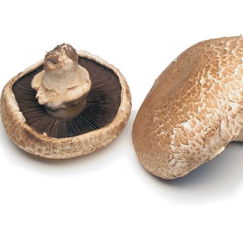 Portabella mushrooms 2 pcs