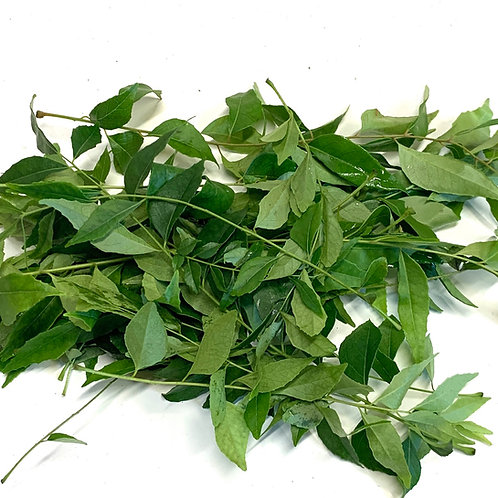 Curry Leaves- 1 Ounce bunch