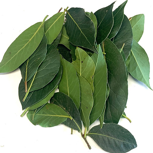 Fresh bay leaves 1z bag